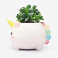 Nothing will improve your mood better than a magical plant in a cute Unicorn planter. Perfect for cacti and succulents, the planter features four drainage holes in the base to prevent overwatering. Unicorn Room Decor, Unicorn Rooms, Unicorn Bedroom, Unicorn Gifts, Unicorn Party, Rainbow Unicorn, Unicorn Birthday, Unicorns And Mermaids, Deco Originale