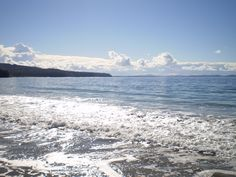 Adventure Bay, Bruny Island Bruny Island, Wild Forest, Little Island, Wild And Free, Tasmania, Wander, Shells, Surfing, Bucket
