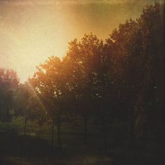 Happy #autumnequinox! #fall #autumn #mextures #mexturesapp #mexturescollective #jj_mextures #igerslinz #igersaustria