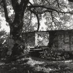 Expositions - Villa « Le Lac » Le Corbusier