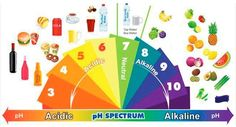 10 maneras de alcalinizar tu cuerpo hoy, con sencillos pero acertados pasos. Son muchas las maneras en que podemos hacer de nuestro cuerpo, un cuerpo ácido: proteínas, azúcar, panes, productos lácteos, incluso el ejercicio. Cuando hablamos de un cuerpo alcalinizado nos referimos a los cambios en el pH del organismo. El Dr. Robert Young ha ...