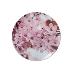 Japanese cherry blossom plates ($25) ❤ liked on Polyvore