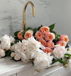 Luxury Flowers, My Flower, Fresh Flowers, Beautiful Flowers, Flower Aesthetic, Planting Flowers, Floral Arrangements, Floral Wreath, Bloom