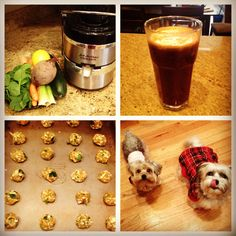 This week instead of throwing away my juice pulp, i decided to make dog treats!! I mixed together my juice pulp (carrot, celery, spinach and cucumber) with a mushed banana, and a little coconut oil. I baked then for around 15 minutes at 350 degrees. Dogs LOVED them!! #JUICE #JUICEPULP #DOGTREATS #CARROTS  #CUCUMBERS  #CELERY  #SPINACH #HAWA #HEALTH