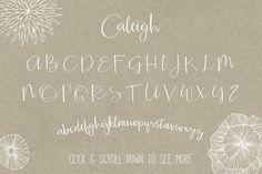 Caleigh Script Font with Bonus - Script