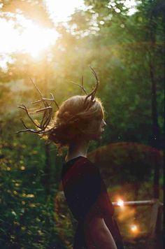 童話のような写真を下さい。