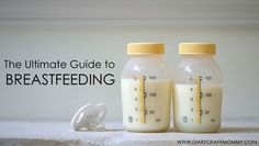 The Ultimate Breastfeeding Guide: She talks about latching on, pumping, breastfeeding, losing weight while keeping your milk supply up, tons of lactation recipes, and she even gives you a breastfeeding/pumping schedule!