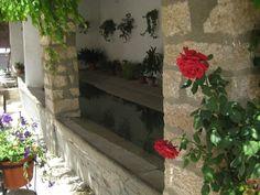 Lavadero del Brazal. Detalle con flores y macetas en primavera.
