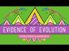 Sean riley riley3154 on pinterest evolution its a thing crash course biology 20 youtube fandeluxe Gallery