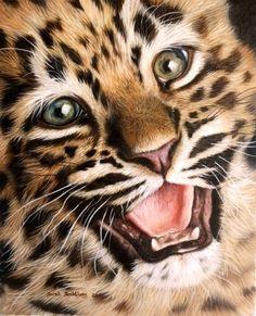 Leopard cub by Sarah Stribbling
