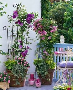 Trellis with flowers