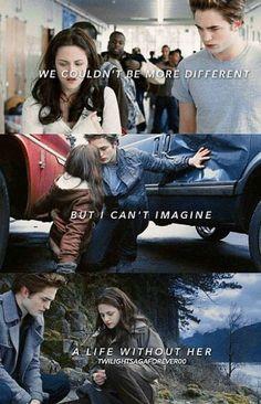 Twilight Saga Quotes, Twilight Jokes, Twilight Saga Series, Twilight Pictures, Twilight Series, Twilight Movie, Twilight Quiz, Twilight Videos, Twilight Bella And Edward