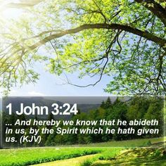 1John 3:24 ...And hereby we know that He abideth in us, by the Spirit which He hath given us (KJV)