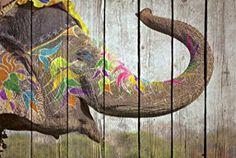 Cuadro madera elefante colores