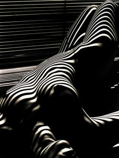 Photographed by Lucien Clergue (one of the 'Nu Zébré' series). Beautiful, use of light and form. Black White Photos, Black And White Photography, Light And Shadow Photography, Stylo Art, Jolie Photo, Op Art, Boudoir Photography, Photography Trips, Photography 2017