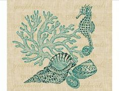 Vintage coral Seahorse shells on fabric