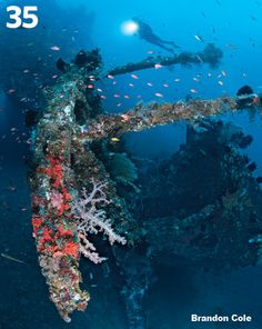 Liberty Wreck  Bali, Indonesia One of the world's best wrecks accessible from shore, the USAT Liberty was a casualty of Japanese torpedoes in World War II, left abandoned on Tulamben's rocky beach, then pushed 100 feet offshore by lava from Mount Agung's 1963 eruption. Snorkelers can glimpse the Liberty in just 10 feet of water, but you'll be glad you've strapped on tanks to relish the deeper, wide-angle views of a wreck encrusted with sponges and corals, and macro treasures like ghost…