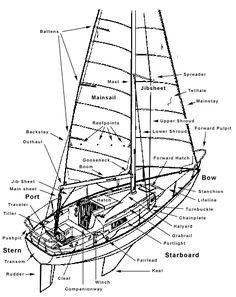 Sailing terms. Makes the sailing scene in Wedding Crashers that much better.