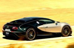 Racing green and champagne. 2014 Bugatti SuperVeyron car wrap vehicle graphic vinyl