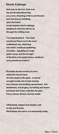 Image result for mary oliver poems