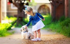 awesome cute little girl play white dog wallpaper