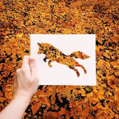 Coloring without paint? That's no problem for Nikolai Tolsty, an artist who uses colors of nature to paint his silhouettes of animals. Nikolai uses paper Land Art, Art Et Nature, Nature Paper, Wild Nature, Animal Cutouts, Foto Fun, Animal Silhouette, Paper Animals, Cut Animals