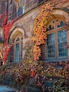 Princeton, New Jersey. Favorite Ivy League Campus