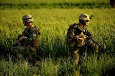 MARSOC Marines take a knee in a wheat field in Suji as Afghan National Army Soldiers and Marine Special Operation Command Marines patrol through the village in Farah Prov. Marsoc Marines, Us Marines, Marine Raiders, Special Operations Command, Navy Sailor, Army Soldier, American Soldiers, Special Forces, Marine Corps