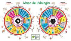 Resultado de imagen para imagenes de iridologia