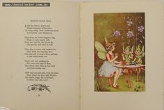 Lot 384 a - Book  - A Bunch of Wild Flowers - by Ida Rentoul Outhwaite - 6 tipped in colour plates 1st edition 1933A bunch of wild flowers - Verse and illustratio