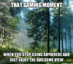 I did that in Skyrim, Far Cry 3, and Fallout <3