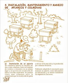 La Familia de la Apicultura - The Beekeeping of Family: Manual Apícola Ilustrado - Beekeeping Illustrated Manual. Drone Bee, Bee Hive Plans, Bee Boxes, Environmental Graphics, Queen Bees, Bee Keeping, Manual, Old Things, Survival