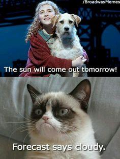 Grumpy cat Annie musical funny humor