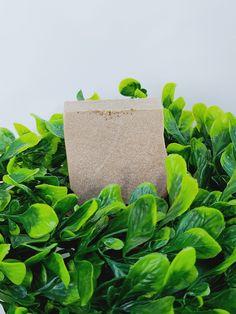 Acne Detox, Acne Help, Eczema Psoriasis, Sea Moss, Lighten Skin, Lavender Soap, Flawless Skin, Cleanses, Tea Tree