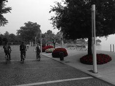 #GCblogtour13  In bici, lungolago di Bardolino @GardaConcierge