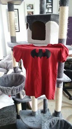 Herren t-shirt Herren T Shirt, Rap, Sweatshirts, Sweaters, Fashion, Projects, Moda, Fashion Styles, Wraps