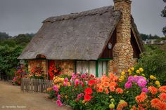 Thatched roof cottage in Carmel by the Sea, California Style Cottage, Cottage Living, Cozy Cottage, Cottage Homes, Irish Cottage, Country Living, Storybook Homes, Storybook Cottage, Little Cottages