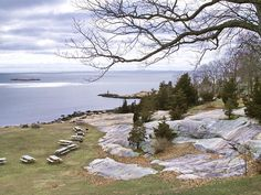 More Rocky Neck. (Photo by Tom Henthorn)