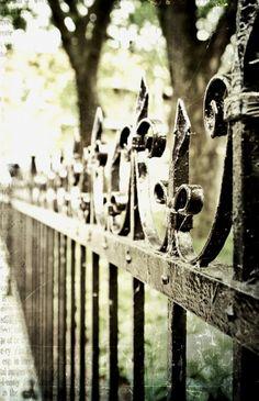 ysvoice:    | ♕ | TGI Fence Friday | by rosy outlook | via iyoupapa | petapeta