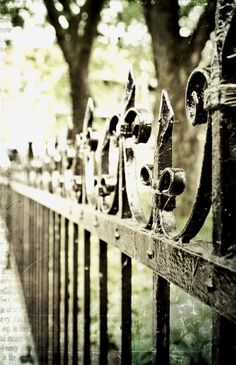 ysvoice:    | ♕ |  TGI Fence Friday  | by rosy outlook | via iyoupapa | petapeta