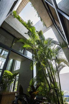 Galería de Casa Binh / VTN Architects - 11