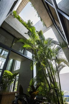 Gallery of Binh House / Vo Trong Nhia Architects - 11