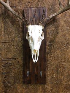 BURNT Pine Deer Skull Hanger Deer Skull Plaque by BarnwoodPickers