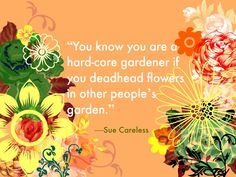Flowering Wisdom | Gardening Quotes from Eagleson http://eaglesonlandscape.com/flowering-wisdom-gardening-quotes-from-eagleson/
