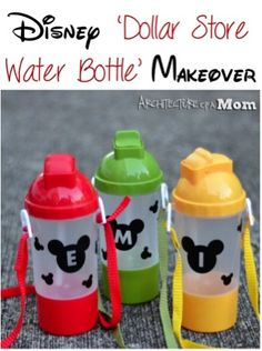 Water Bottle Crafts Disney