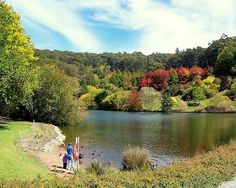 Mt Lofty Botanic Garden Lake - South Australia - community action for sustainability - CASwiki South Australia, Botanical Gardens, Sustainability, Golf Courses, Asia, Community, River, Outdoor