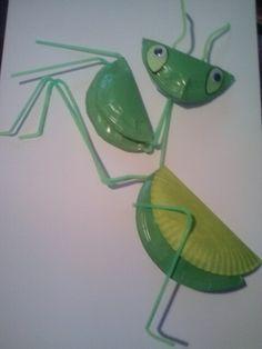 Weird animals VBS praying mantis