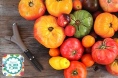 It's time to start planning your summer tomato garden. What types of tomatoes are you going to grow this year? Sungold? Early Girl? Brandywine? With over 100 different types of tomatoes in our database, Flower Power is here to make sure you have a great garden!
