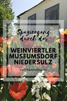 Besuch im Weinviertler Museumsdorf Niedersulz  #Österreich #Niederösterreich #Museum #niedersulz