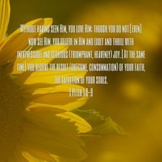 1Peter 1:8-9